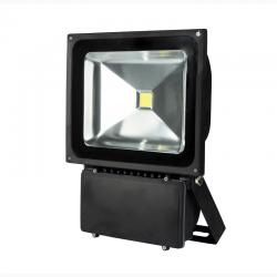 LED ŽIBINTAS 80W,100W